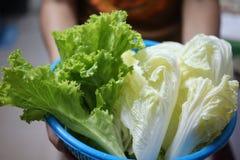 Il primo piano delle verdure con colore verde è una sostanza importante, aiuti della clorofilla ridurre il rischio di cancro fotografie stock