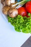 Il primo piano di insalata va, pomodori su fondo leggero Fotografia Stock Libera da Diritti