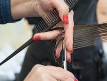 Il primo piano disponibile di forbici ha tagliato i capelli sulla sua testa immagini stock libere da diritti