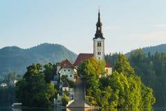 Il primo piano e il pletna sanguinati dell'isola sul lago hanno sanguinato, la Slovenia Fotografia Stock Libera da Diritti