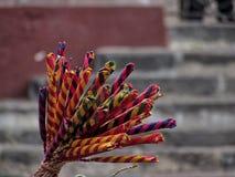 Il primo piano ha sparato del giocattolo artigianale messicano tradizionale conosciuto come il ` di atrapa-novios del ` in San Mi Fotografia Stock