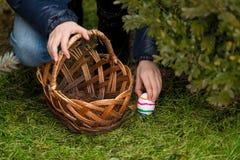 Il primo piano ha sparato della ragazza che mette l'uovo di Pasqua variopinto nel canestro Fotografia Stock