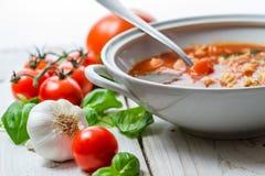Il primo piano sulla minestra del pomodoro ha fatto l'aglio ed il basilico del ââof Fotografie Stock
