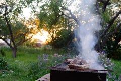 Il processo di cottura del pollo del barbecue sulla griglia mangal Fotografia Stock Libera da Diritti