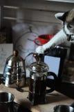 Il processo di fare caffè in stampa francese Il gatto sveglio preme il tuffatore dalla zampa fotografie stock