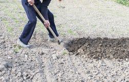 Il processo di scavatura Immagine Stock