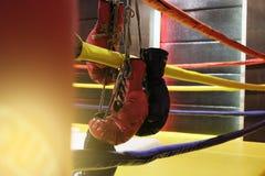 Il punching ball ed i guantoni da pugile rossi appende fuori dal ring Immagini Stock Libere da Diritti