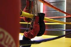 Il punching ball ed i guantoni da pugile rossi appende fuori dal ring Fotografie Stock