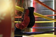 Il punching ball ed i guantoni da pugile rossi appende fuori dal ring Fotografia Stock Libera da Diritti