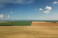 Il punto di vista areale del raccolto sistema nel giorno di estate soleggiato Raccolto del grano Fotografia Stock
