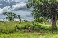 Il punto di vista dei bambini poveri degli Africani che giocano nell'erba del campo, ragazza espressiva accoglie, in Angola fotografia stock
