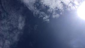 Il punto di vista della formica gira il cielo della cottura video d archivio