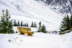 Il punto di vista delle montagne delle alpi Fotografie Stock