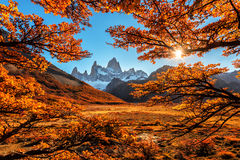 Il punto di vista di autunno di Monte Fitz Roy immagine stock libera da diritti