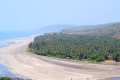Il punto di vista di Serene Beach con il mare ondeggia con i pini dalla spiaggia superiora di Anjarle, Konkan, India Fotografia Stock