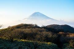 Il punto di vista di un turista del Mt Fuji dal lago Ashi immagine stock libera da diritti