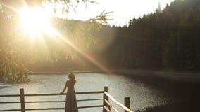 Il punto di vista posteriore della crisalide splendida della giovane donna con capelli scuri lunghi gode del paesaggio della natu stock footage