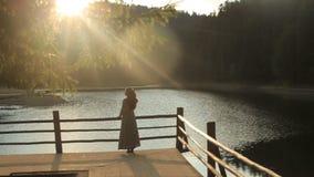 Il punto di vista posteriore della ragazza adorabile in vestito ucraino etnico con capelli scuri lunghi gode del paesaggio della  stock footage