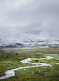 Il Qinghai - plateau dello Xizang Immagini Stock Libere da Diritti