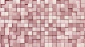 Il quadrato rosa placca il fondo, la rappresentazione 3D Immagine Stock