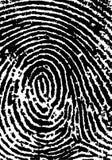 Il raccolto 2 dell'impronta digitale Fotografie Stock