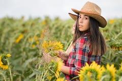 Il raccolto d'esame della bella e giovane ragazza dell'agricoltore dei girasoli dentro Fotografia Stock