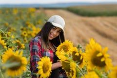 Il raccolto d'esame della bella e giovane ragazza dell'agricoltore dei girasoli dentro Immagini Stock
