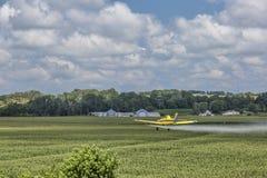 Il raccolto del cereale di Duting Fotografia Stock