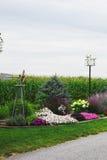 Il raccolto del cereale e del giardino nel paese di Amish Fotografia Stock Libera da Diritti