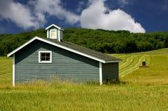 Il raccolto del fieno di taglio Fotografia Stock