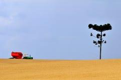 Il raccolto del frumento Immagine Stock