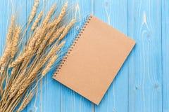 Il raccolto del grano e spazio in bianco secchi del libro per testo o progettazione sul wo blu Fotografie Stock Libere da Diritti
