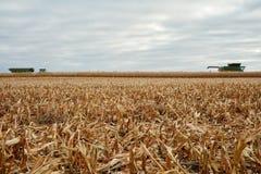 Il raccolto del grano e un macchinario di raccolta raccolti Immagine Stock