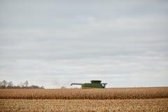 Il raccolto del grano, una stoppia e una mietitrebbiatrice asciutti Immagini Stock