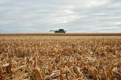 Il raccolto del grano, una stoppia e una mietitrebbiatrice raccolti Fotografia Stock Libera da Diritti