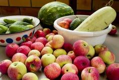 Il raccolto della frutta e delle verdure Fotografia Stock