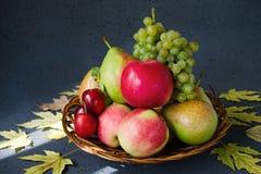 Il raccolto della frutta fresca luminosa su un fondo nero con giallo di autunno va Lit dai raggi del sole Concetto della raccolta Fotografie Stock Libere da Diritti