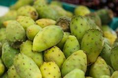 Il raccolto della pera del cactus fotografia stock