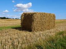 Il raccolto di grano della pila della balla di fieno in un campo Fotografia Stock