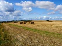 Il raccolto di grano della pila della balla di fieno in un campo Fotografia Stock Libera da Diritti