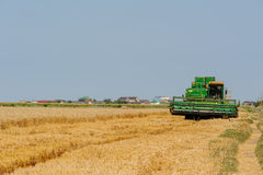 Il raccolto di raccolto meccanico di agricoltura nel campo Immagini Stock