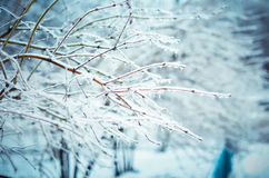 Il racconto dell'inverno Immagine Stock Libera da Diritti