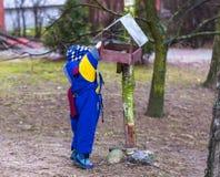 Il ragazzino alimenta gli uccelli all'aperto sul parco della città immagini stock libere da diritti