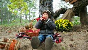 Il ragazzino che mangia la mela in foresta, bambino che si siede sulla copertura di picnic, Halloween prepara, feste di autunno stock footage
