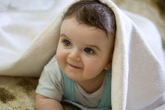 Il ragazzino di 7 mesi osserva fuori da sotto il co Fotografia Stock Libera da Diritti