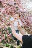 Il ragazzino di Beutifull in sue mani del padre tocca un ramo ed i sorrisi del fiore di ciliegia immagini stock libere da diritti