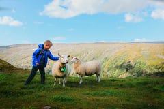 Il ragazzino e le pecore in montagne, bambini viaggiano per imparare gli animali immagini stock libere da diritti