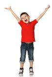 Il ragazzino ha sollevato le sue mani Fotografia Stock Libera da Diritti