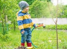 Il ragazzino nel giardino, innaffiante l'albero piantato dai fili dell'alberello da un tubo flessibile, Immagini Stock