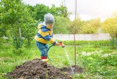 Il ragazzino nel giardino, innaffiante l'albero piantato dai fili dell'alberello da un tubo flessibile, Immagini Stock Libere da Diritti